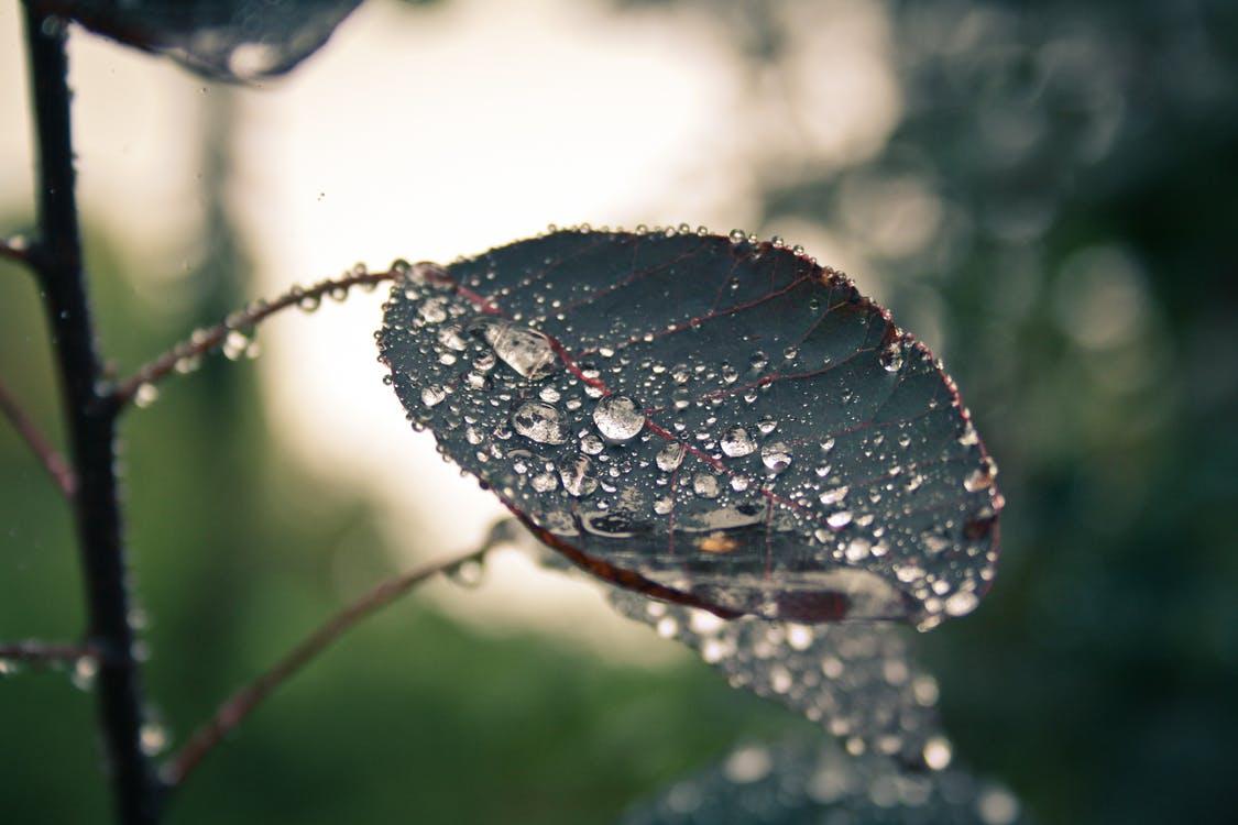 Tipps für kreative Köpfe Schlechtwetter Blues